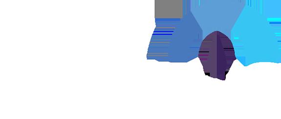 How Many FPS Logo